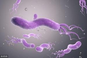 王泽民主任谈我国有近8亿幽门螺杆菌感染者咱们该拿它怎么办